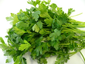 Parsley and Its Health Benefits