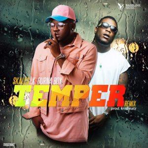 skales-temper-remix
