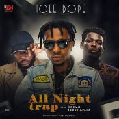 tcee-trap-1